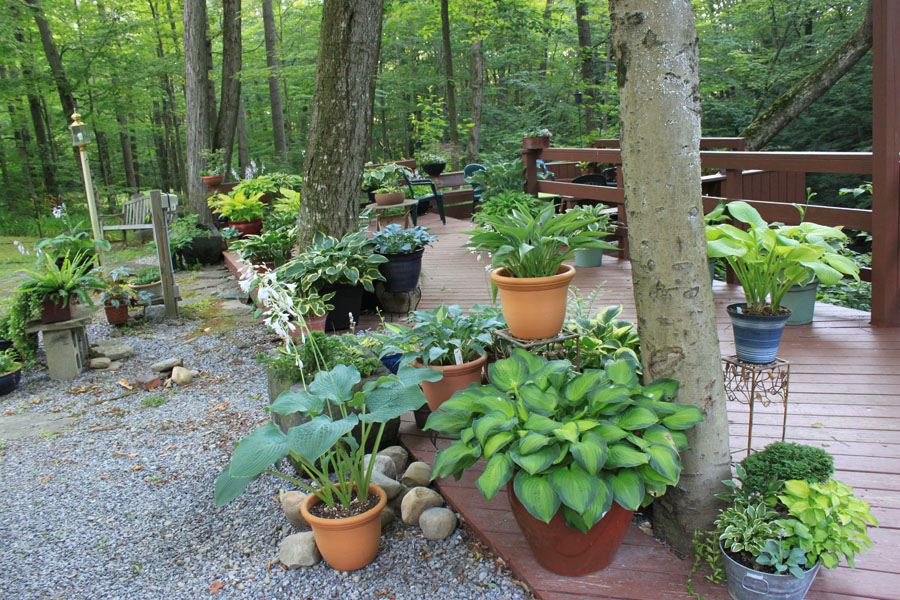 Image Result For Unique Container Gardening Ideas